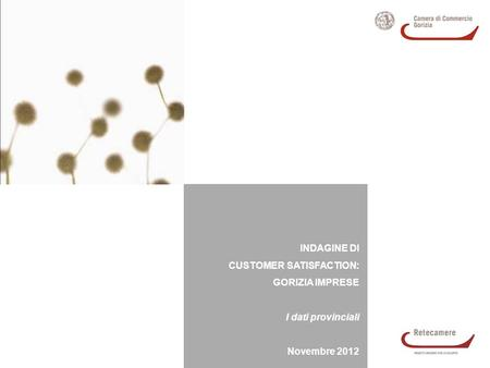 INDAGINE DI CUSTOMER SATISFACTION: GORIZIA IMPRESE I dati provinciali Novembre 2012.