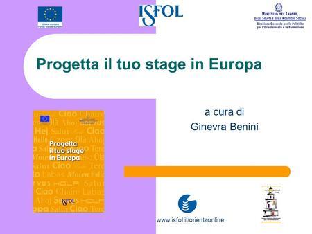 manuale dello stage in europa nuova edizione ginevra