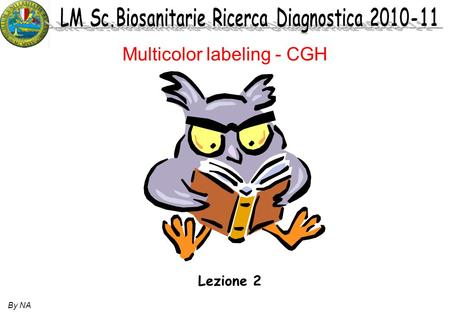 By NA Lezione 2 Multicolor labeling - CGH. By NA.