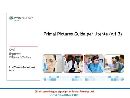 Ovid Training Department 2011 Primal Pictures Guida per Utente (v.1.3) 3D anatomy images copyright of Primal Pictures Ltd www.primalpictures.com.