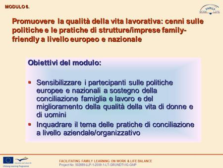 FACILITATING FAMILY LEARNING ON WORK & LIFE BALANCE Project No: 502889-LLP-1-2009-1-LT-GRUNDTVIG-GMP Promuovere la qualità della vita lavorativa: cenni.