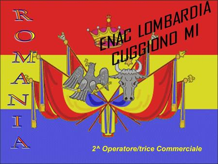 2^ Operatore/trice Commerciale