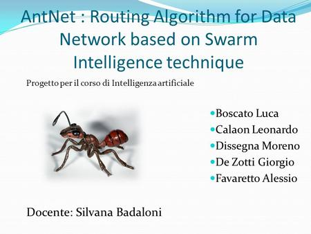AntNet : Routing Algorithm for Data Network based on Swarm Intelligence technique Boscato Luca Calaon Leonardo Dissegna Moreno De Zotti Giorgio Favaretto.