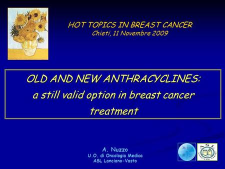 HOT TOPICS IN BREAST CANCER Chieti, 11 Novembre 2009 OLD AND NEW ANTHRACYCLINES: a still valid option in breast cancer treatment A. Nuzzo U.O. di Oncologia.