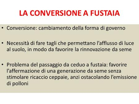 LA CONVERSIONE A FUSTAIA