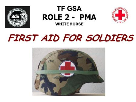 TF GSA ROLE 2 - PMA WHITE HORSE FIRST AID FOR SOLDIERS.