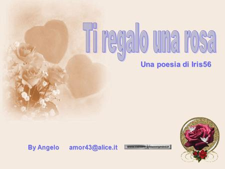 Ti regalo una rosa Una poesia di Iris56 By Angelo amor43@alice.it.