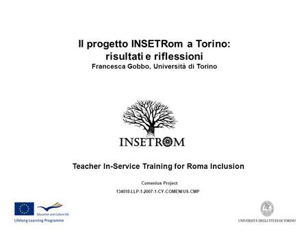 Teacher In-Service Training for Roma Inclusion Comenius Project 134018-LLP-1-2007-1-CY-COMENIUS-CMP Il progetto INSETRom a Torino: risultati e riflessioni.