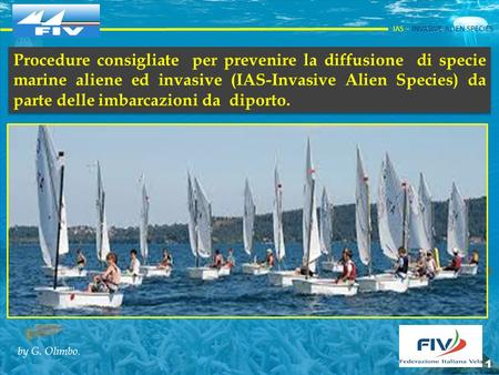 IAS – INVASIVE ALIEN SPECIES 1 Procedure consigliate per prevenire la diffusione di specie marine aliene ed invasive (IAS-Invasive Alien. Procedure consigliate.