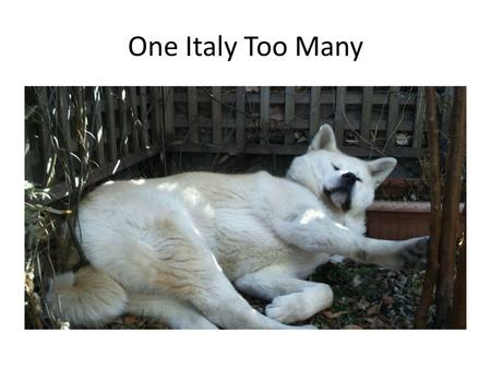 One Italy Too Many.