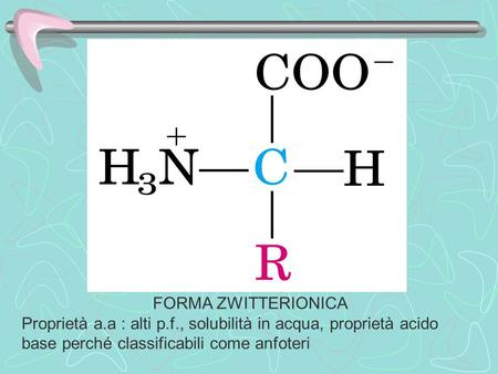 FORMA ZWITTERIONICA Proprietà a.a : alti p.f., solubilità in acqua, proprietà acido base perché classificabili come anfoteri.