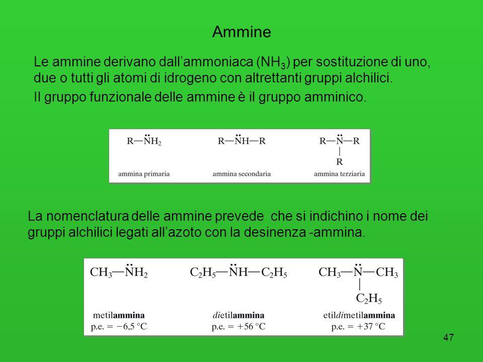 48 Le ammine primarie e secondarie formano legami a idrogeno intermolecolari, per cui i loro punti di ebollizione sono più alti di quelli degli alcani a uguale massa molecolare.