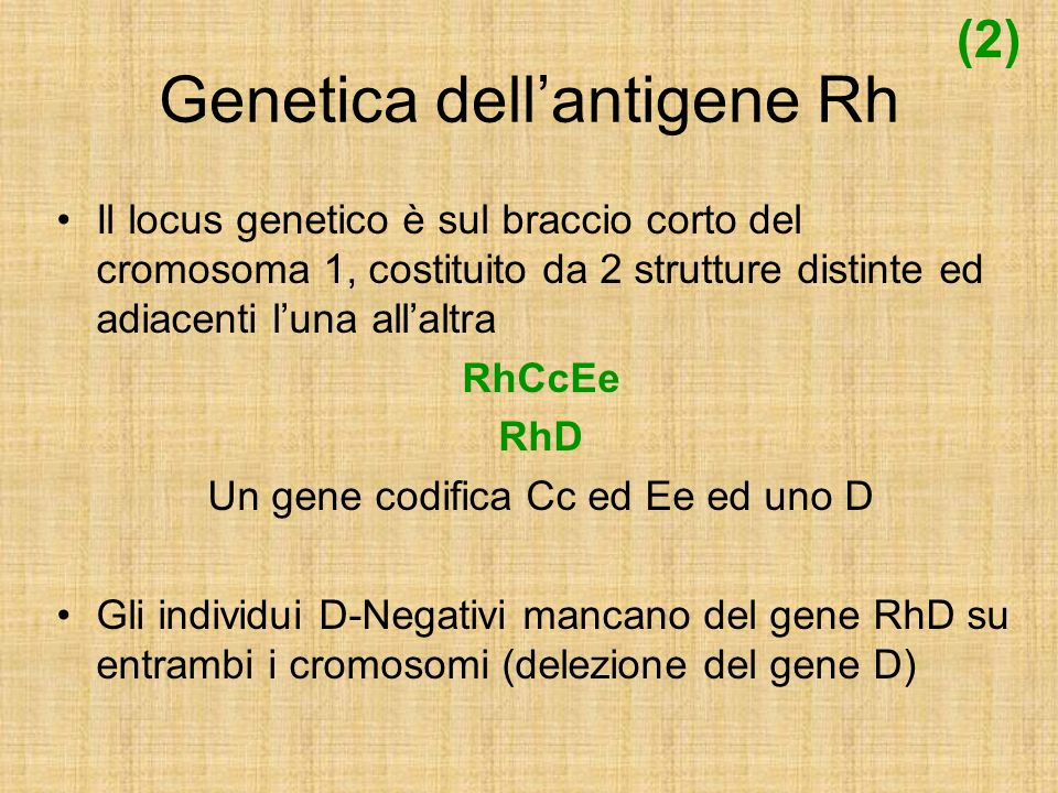 Isoimmunizzazione Individuo mancante dellantigene D (Rh Negativo) esposto allantigene può immunizzarsi Immunizzazione clinicamente significativa richiede due esposizioni allantigene Risposta immune primaria (IgM ) Seconda esposizione Risposta immune secondaria (IgG ) 0,25 mL di sangue Rh Positivo