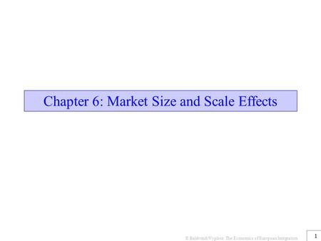 Chapter 6: Market Size and Scale Effects