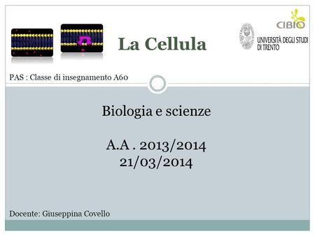 La Cellula Biologia e scienze A.A / /03/2014