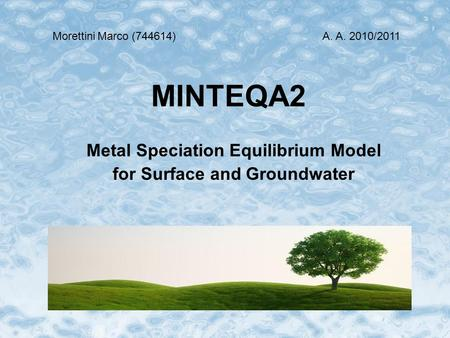 MINTEQA2 Metal Speciation Equilibrium Model for Surface and Groundwater MorettiniMarco (744614)A. A. 2010/2011.