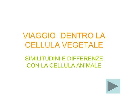 VIAGGIO DENTRO LA CELLULA VEGETALE