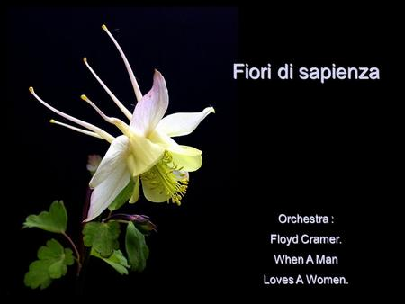 Orchestra : Floyd Cramer. When A Man Loves A Women. Fiori di sapienza.