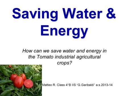 "Saving Water & Energy How can we save water and energy in the Tomato industrial agricultural crops? Matteo R. Class 4°B IIS ""G.Garibaldi"" a.s.2013-14."