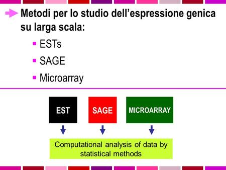 Metodi per lo studio dell'espressione genica su larga scala:  ESTs  SAGE  Microarray MICROARRAY SAGEEST Computational analysis of data by statistical.