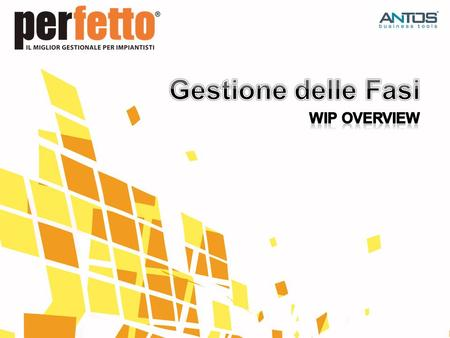 Gestione delle Fasi WIP Overview.