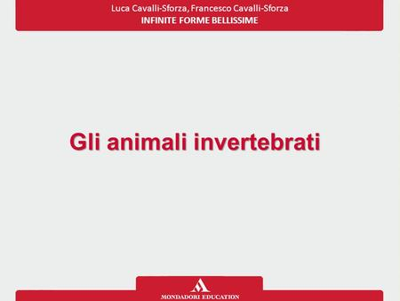 Gli animali invertebrati