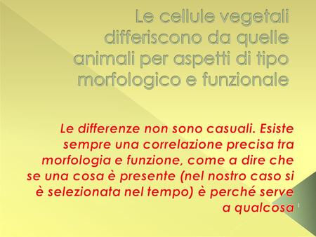 Le differenze non sono casuali