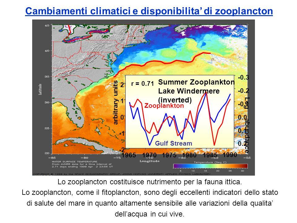 Distruzione dello strato di Ozono Nella fascia di atmosfera fra 10 e 50 km di altezza si trova la massima concentrazione di Ozono (O3).