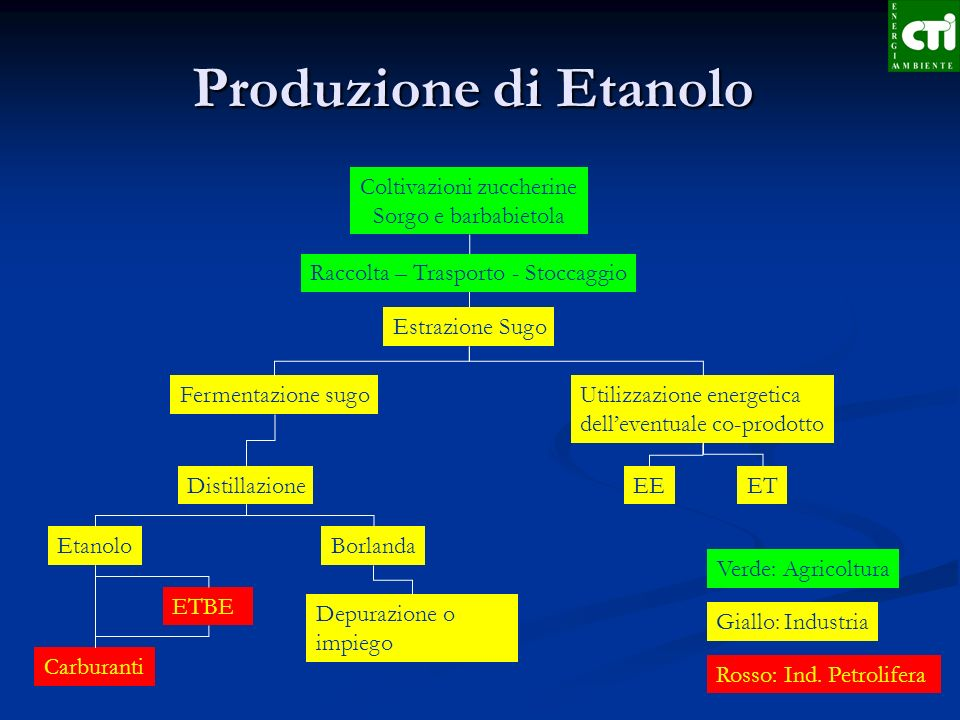 Fermentazione di Amido/zucchero ETBE Etil-tertiobutil-etere da incorporare nelle benzine EtanoloSpecie t/ha ss Mais 20 - 30 Sorgo 24 - 35