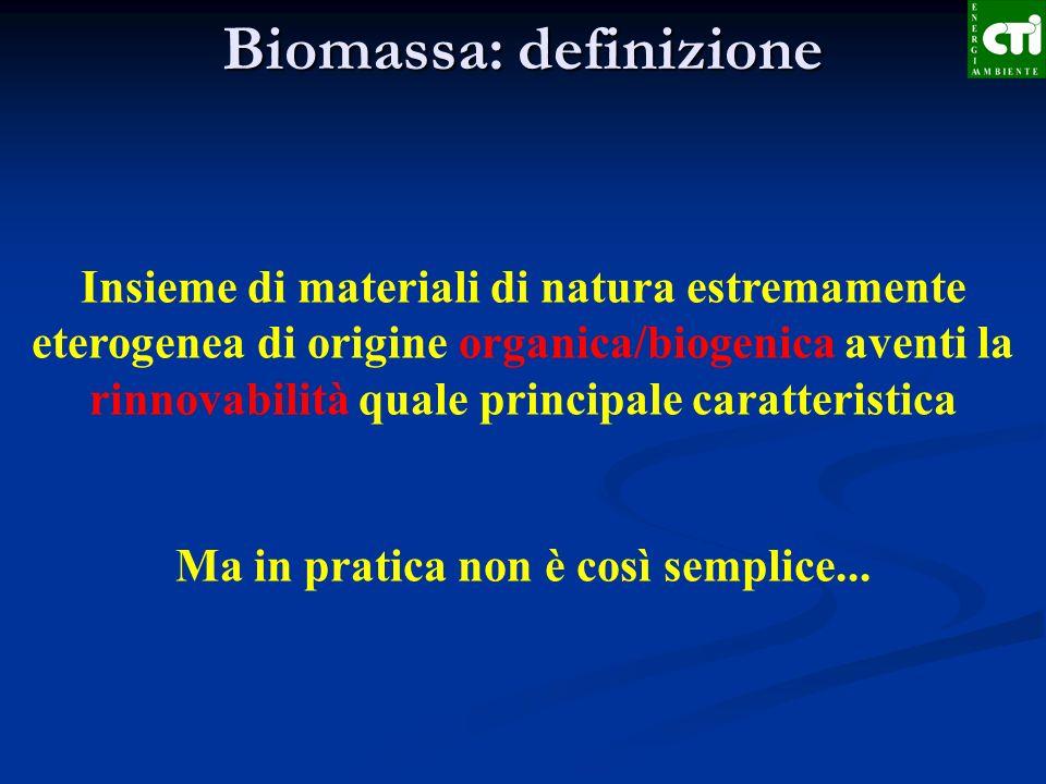 Biomassa: definizione La definizione di biomassa varia in funzione della destinazione finale e del contesto DLvo 29/12/03, n.