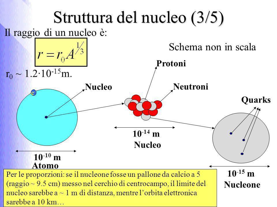Struttura del nucleo (4/5) Per la legge di Coulomb - F attrattiva per cariche di segno opposto - F repulsiva altrimenti I protoni interni al nucleo (r =4·10 -15 m) esercitano una forza elettromagnetica repulsiva pari a ~ 14 N;I protoni interni al nucleo (r =4·10 -15 m) esercitano una forza elettromagnetica repulsiva pari a ~ 14 N; p ed e - hanno carica Q 1 = Q 2 = 1.6·10 -19 Cp ed e - hanno carica Q 1 = Q 2 = 1.6·10 -19 C ε = 8.9 ·10 -12 C 2 /Nm 2ε = 8.9 ·10 -12 C 2 /Nm 2 Forza repulsiva 10 2 cioè almeno100 volte più intensa di quella attrattiva che lega e - al nucleo;Forza repulsiva 10 2 cioè almeno100 volte più intensa di quella attrattiva che lega e - al nucleo; Questa forza se non bilanciata da forze di tipo attrattivo, renderebbe impossibile lesistenza del nucleo;Questa forza se non bilanciata da forze di tipo attrattivo, renderebbe impossibile lesistenza del nucleo;