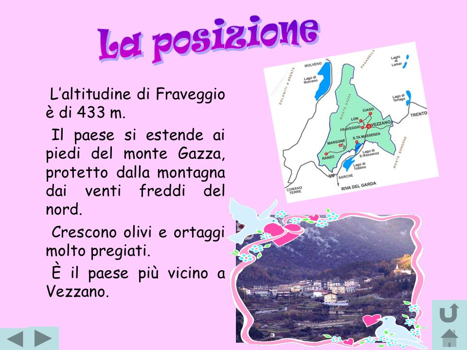 Le attività principali a Fraveggio erano: lallevamento del bestiame ed il lavoro dei campi in particolare si coltivano ancora ortaggi, ma anche viti, olivi e alberi da frutto.