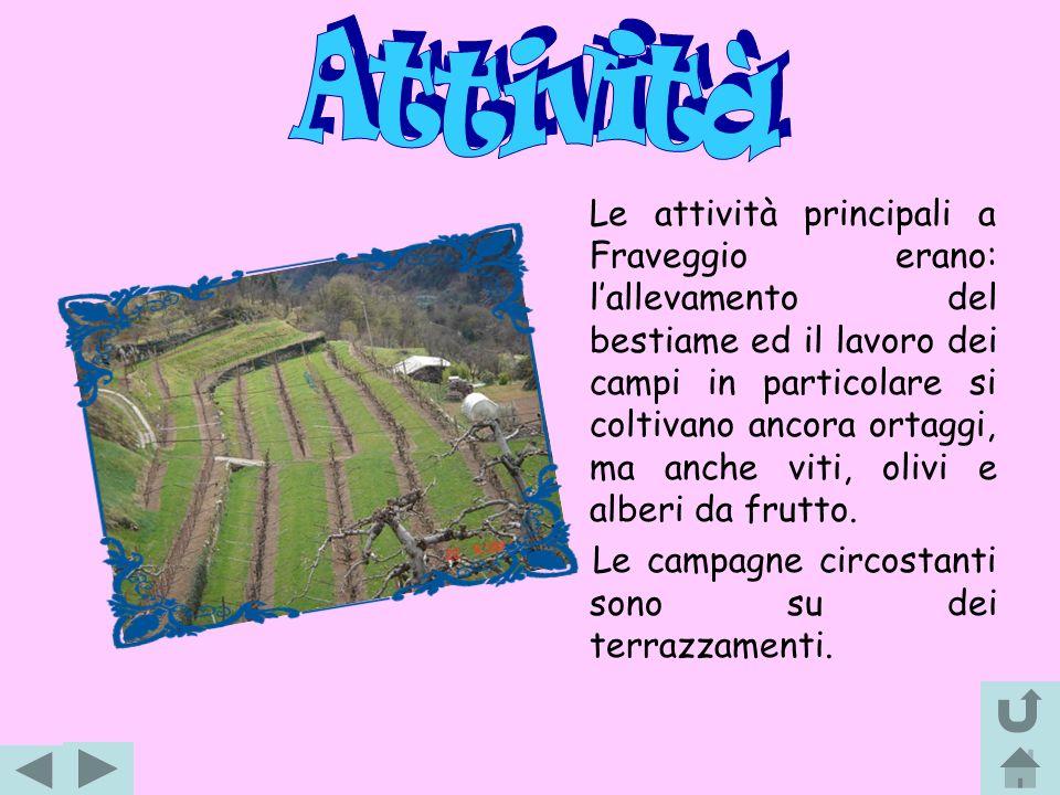 Fino al 1527 Fraveggio, Lon, Ciago, Covelo e Vezzano formava lantico comune di Pedegaza, attraversato dalla strada romana che dalla Valle dellAdige, passando per Terlago, scendeva nella Valle del Sarca.