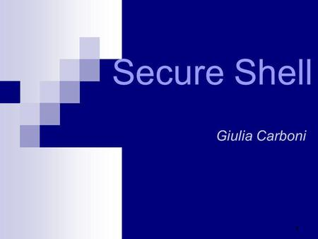 Secure Shell Giulia Carboni