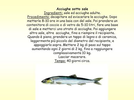 Acciughe sotto sale Ingredienti: sale ed acciughe adulte. Procedimento: decapitare ed eviscerare le acciughe. Dopo metterle 8-10 ore in una baia con del.