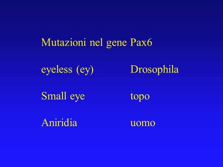 Mutazioni nel gene Pax6 eyeless (ey) 		Drosophila Small eye			topo
