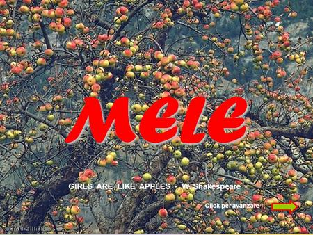 MELE GIRLS ARE LIKE APPLES - W. Shakespeare Click per avanzare.