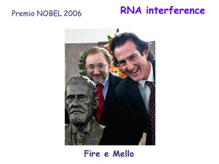 RNA interference Premio NOBEL 2006 Fire e Mello.