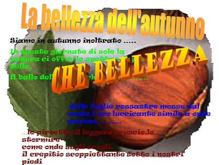 La bellezza dell'autunno