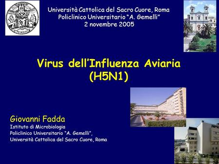 Virus dell'Influenza Aviaria (H5N1)