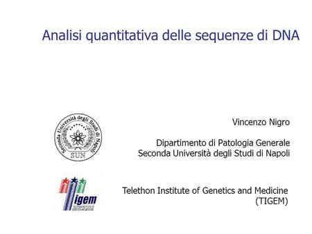 Analisi quantitativa delle sequenze di DNA Vincenzo Nigro Dipartimento di Patologia Generale Seconda Università degli Studi di Napoli Telethon Institute.