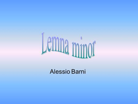 Lemna minor Alessio Barni.