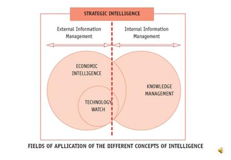 Competitive Intelligence Economic Intelligence Business Intelligence Current Intelligence Estimative Intelligence Operational Support Intelligence Scientific.