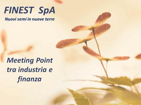 FINEST SpA Nuovi semi in nuove terre Meeting Point tra industria e finanza.