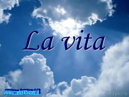 La vita www.carloneworld.it.