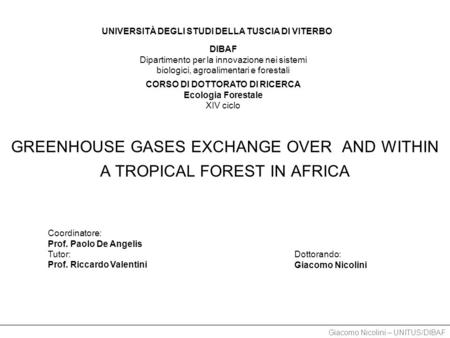 Giacomo Nicolini – UNITUS/DIBAF GREENHOUSE GASES EXCHANGE OVER AND WITHIN A TROPICAL FOREST IN AFRICA Coordinatore: Prof. Paolo De Angelis Tutor: Prof.