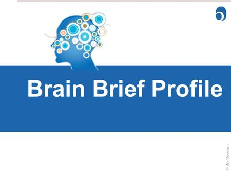 Brain Style Brain Brief Profile Welcome ©Six Seconds.