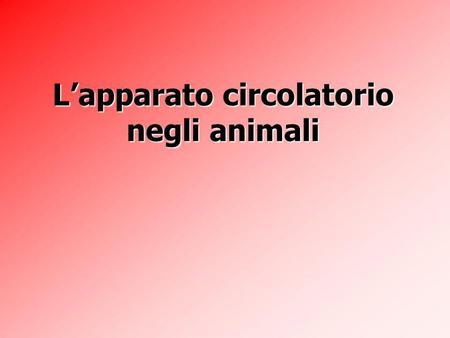 Lapparatocircolatorio negli animali Lapparato circolatorio negli animali.