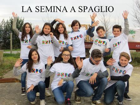 Buon giorno ppt scaricare for Semina a spaglio