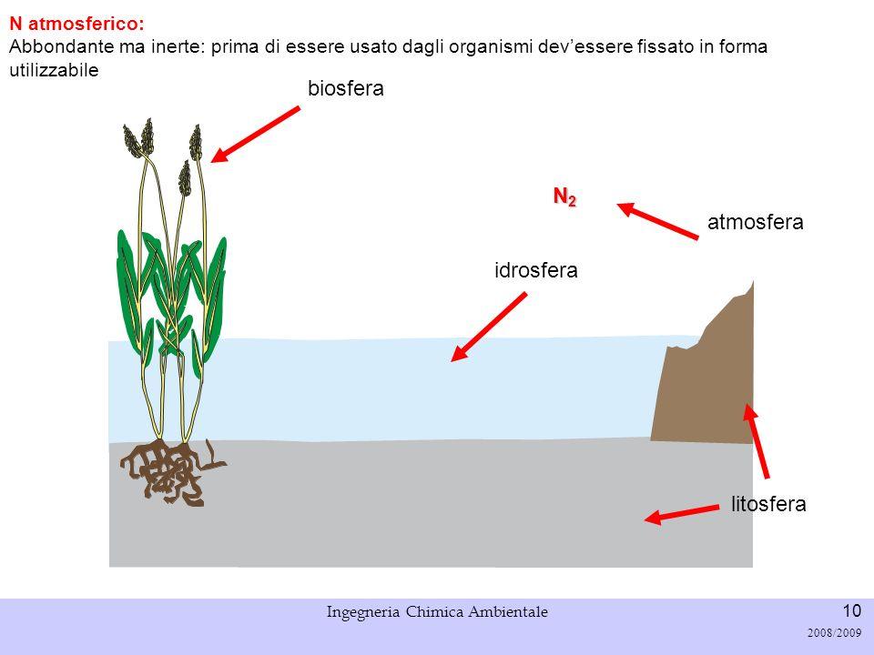 Università di Padova LASA – Laboratorio di Analisi dei Sistemi ambientali Ingegneria Chimica Ambientale 11 2008/2009 fissazione N2N2N2N2 fissazione biologica di N: batteri, alghe azzurre, batteri simbionti con alcune piante (es.